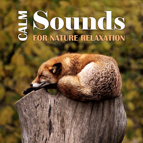 Calm Sounds for Nature Relaxation by Relaxing Sounds of Nature