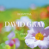 Hospital Food, Pt. 2 by David Gray