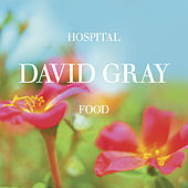 Hospital Food, Pt. 1 by David Gray