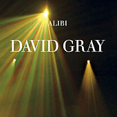 Alibi, Pt. 1 by David Gray