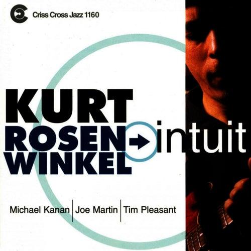 Intuit by Kurt Rosenwinkel