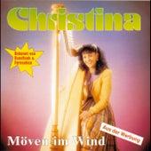 Möven im Wind by Christina