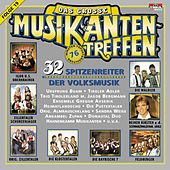 Das große Musikantentreffen Folge 19 de Various Artists