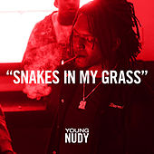 Snakes In My Grass by Young Nudy