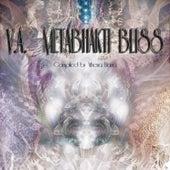Meta Bhakti Bliss Vol. 1. by Various Artists