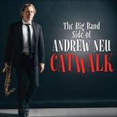 Catwalk by Andrew Neu