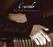 Cascade by David Venitucci (1)