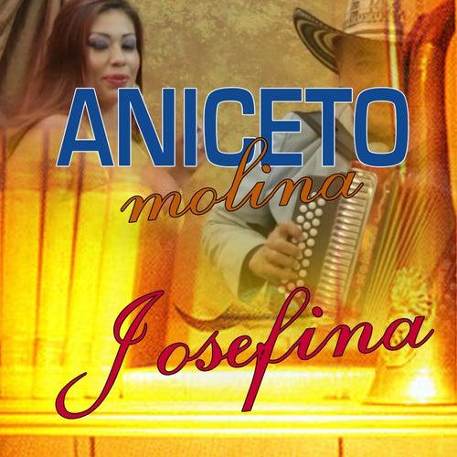 Josefina by Aniceto Molina