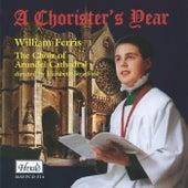 A Chorister's Year by Elizabeth Stratford