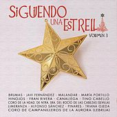 Siguiendo una Estrella (Vol. 3) de Various Artists