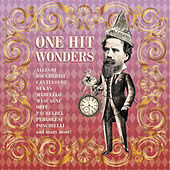 One Hit Wonders by Various Artists