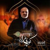 Koocheh Bagh E Raaz (Live) by Mohammad Esfahani