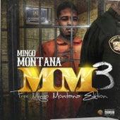 Mm3 de Mingo Montana