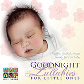 Goodnight Lullabies For Little Ones by Sean O'Boyle