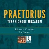 Praetorius: Terpsichore Musarum by Various Artists