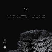Mandala (Malux Remix) / Last of the Tribe (Break Remix) di Camo And Krooked