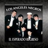 El Esperado Regreso by Los Angeles Negros