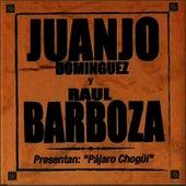 Pajaro Chogui von Juanjo Domínguez
