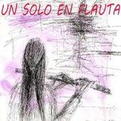 Un Solo en Flauta by Various Artists
