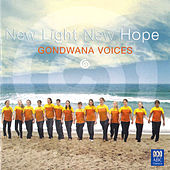 New Light New Hope by Various Artists