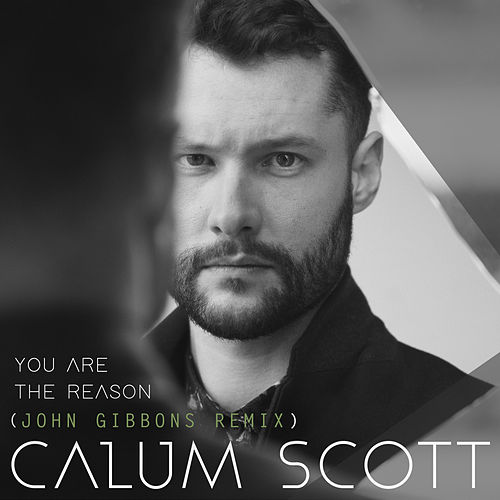 You Are The Reason (John Gibbons Remix) by Calum Scott
