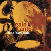 Fina Batucada by Galocantô