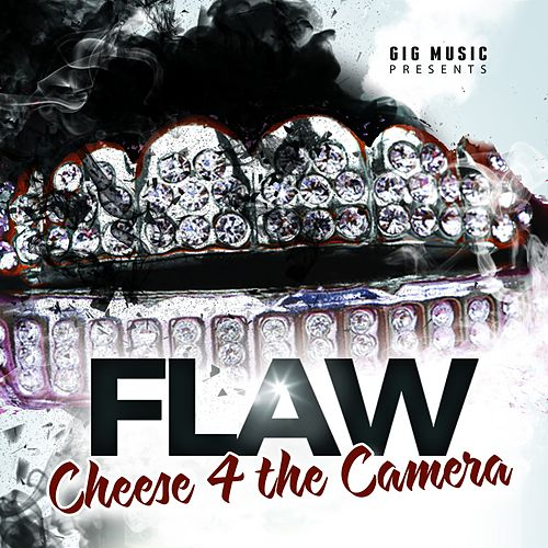 Cheese 4 the Camera by Flaw