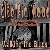 Walking the Blues (feat. Pavlo Dobro) by Electric Wood
