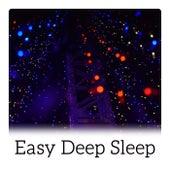 Easy Deep Sleep - Calming Music for Inner Peace, Slow Down, Insomnia Symptoms by Deep Sleep Music Academy