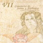 VII Concierto de Sones y Alabados Dedicado a la Chapetona by Banda del Maestro Luciano Jimenez