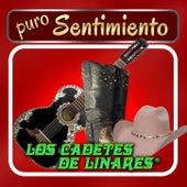 Puro Sentimiento by Los Cadetes De Linares
