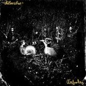 Árboles by Silvestre