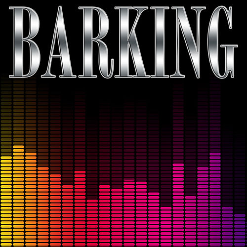 Barking (Instrumental) by Kph