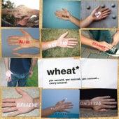 Per Second, Per Second, Per Second... Every Second by Wheat
