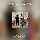 What your life like by kingmusa