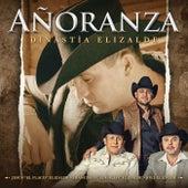 Añoranza - Dinastía Elizalde by Joel Elizalde