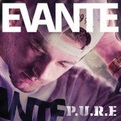 P.U.R.E. by Evante