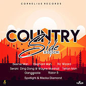 Country Side Riddim von Various Artists