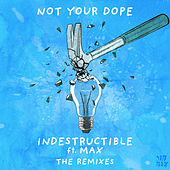 Indestructible (feat. MAX) (The Remixes) by Not Your Dope