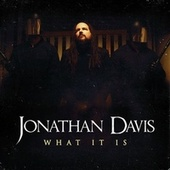 What It Is by Jonathan Davis