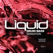 Liquid Drum+Bass Sensation, Vol.1 - EP by Various Artists