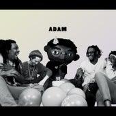 Adam by BRZ