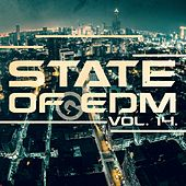 State Of EDM, Vol. 14. - Single by Rich Knochel