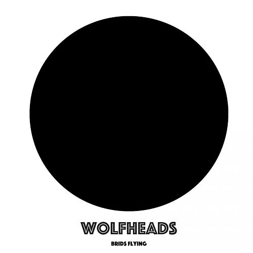 Brids Flying - Single by Wolfheads