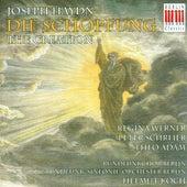 HAYDN, F.J.: Schopfung (Die) (The Creation) [Oratorio] (Koch) by Peter Schreier
