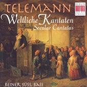 TELEMANN, G.P.: Cantatas (Secular) - TWV 20:37, 48, 57, 66 (Suss) by Various Artists