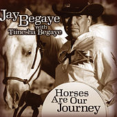 Horses Are Our Journey by Tiinesha Begaye