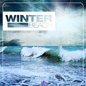 Winter Beach by Various Artists