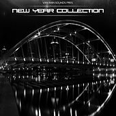 New Year Collection - EP by Various Artists
