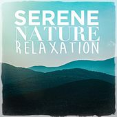 Serene Nature Relaxation de Sounds Of Nature
